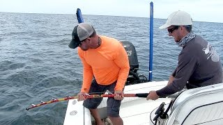 Iron Man Fishing Rod defeats Huge Bull Shark in Minutes - ft. Chew On This