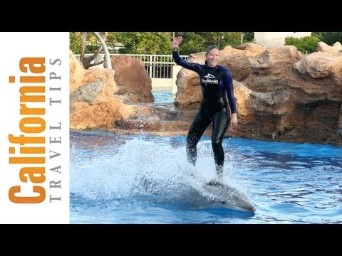 Sea World San Diego Video