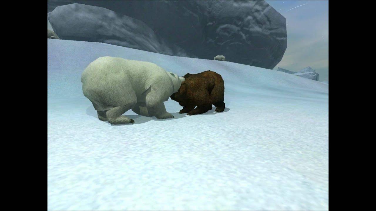 белые и бурые медведи видео для