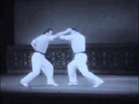 Epic Kung Fu Fighting - 形意拳 Xing Yi Quan Image 1