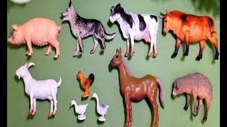 Collection: Animaux de Ferme de jouet - Monde animal - cochon poulet vache cheval mouton