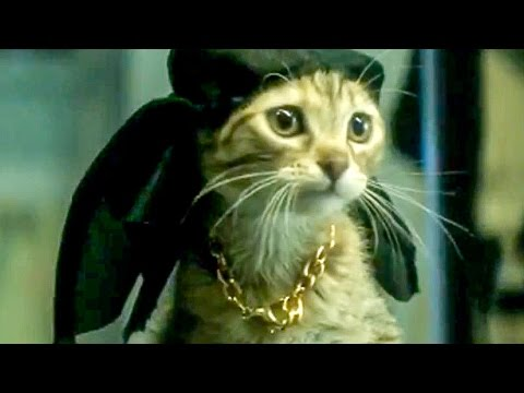 Keanu Red Band Trailer (2016) Jordan Peele, Keegan-Michael Key Comedy Movie