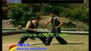 Shaolin Eagle Fist: Eagle & Dragon Fighting KF579-3 coohk