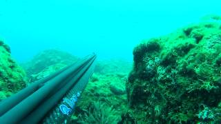 SPEARFISHING APRIL 2015 IONIO GREECE