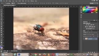 download lagu Cara Mengecilkan Ukuran File Gambar Menggunakan Photoshop Mudah Dan gratis