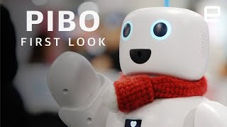PiBo first look at CES 2020