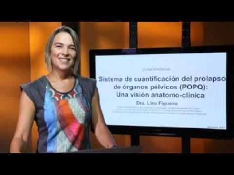 POPQ: Una visión anatomo-clínica. Conferencia de la Dra. Lina Figueira thumbnail