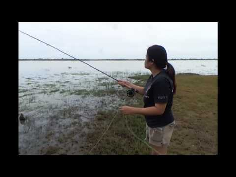 Fly fishing Girls Thailand casting