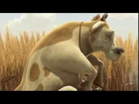 。◕‿◕。 Funny Animal animation – funny video 2013 – 2014 HD
