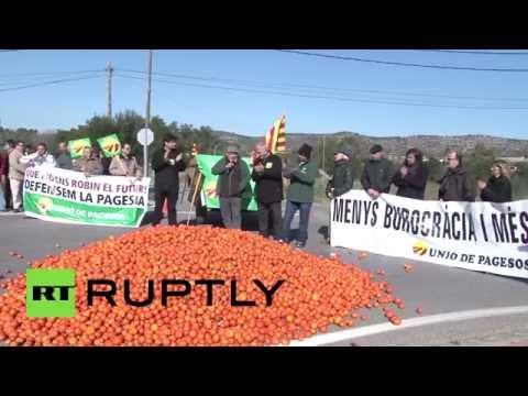 В Испании фермеры выбрасывают излишки урожая из-за антироссийских санкций