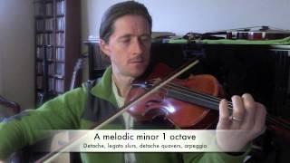 AMEB 1st Grade Violin Technical Work