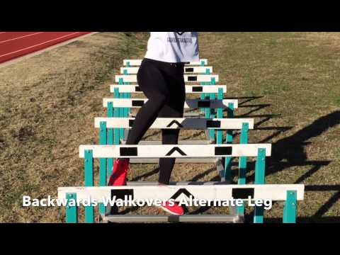 Trotter Chronicles 14 (Hurdle Mobility)