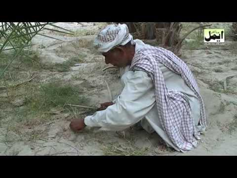 Balochi Film Mehruk Part 2 video