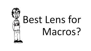 Ask David: Macros, What Lens?