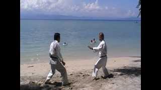 Master Deo Bascon And Master Ed Villarin (Martial Arts Techinques)