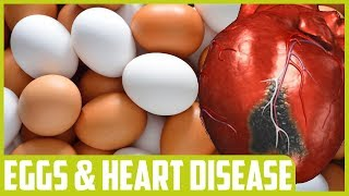 Egg Consumption Not Associated With Heart Attack, Stroke New Study Finds