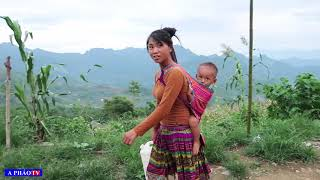 Gánh Nặng Trên Đôi Vai Người Phụ Nữ H'mông - Cuộc Sống Bản Người Mông