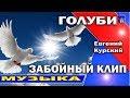 Новинка клипа 2018 Голуби Евгений Курский Смотреть всем Позитивная песня Танцуют ВСЕ mp3