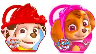 Colors for Children Video  - Paw Patrol Marshall & Skye Activity Cases Coloring Toys