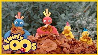 Twirlywoos | FULL EPISODES | Leaves Door | Shows for Kids Leaves Door