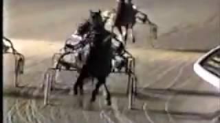 1990 Pompano Park NO SEX PLEASE Breeders Crown Open Trot Ron Waples