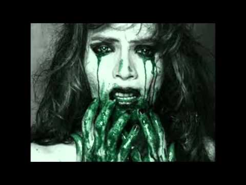 Intestine Gore Blood Rape- Final Flash Lyrics With Video video