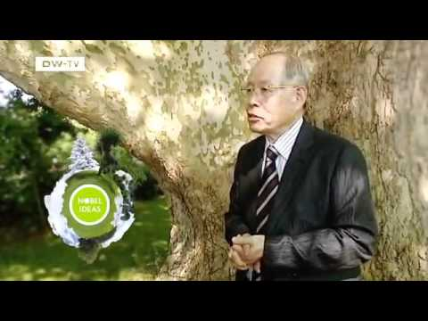 Ryoji Noyori, Japan | Global Ideas