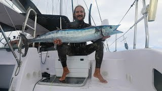 Spearfishing Wahoo from a Sailboat!