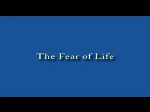 The Fear of Life