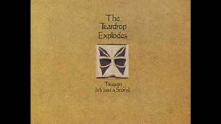 Watch Teardrop Explodes Books video