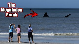 The Megalodon Shark Prank In Florida (Fishing For Tourists)