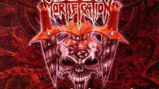 Watch Mortification Seen It All video