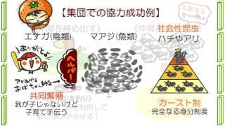 生物5章2話「縄張りと群れ」byWEB玉塾