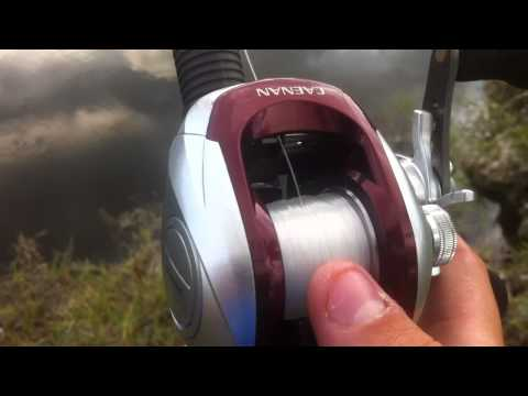 Shimano Caenan Baitcaster Review Revisited