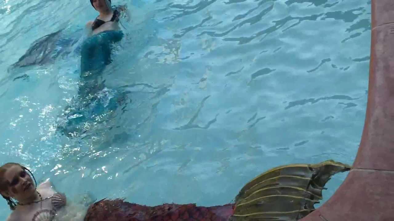 Mermaids Real Videos Real Mermaid Found Alive