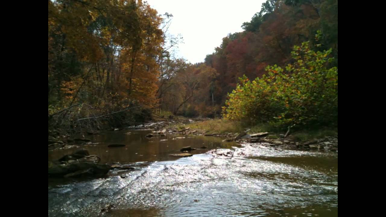 Fly fishing otter creek in louisville ky youtube for Fly fishing kentucky