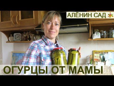 ОГУРЧИКИ маринованные от мамочки / Самый простой проверенный способ маринования огурцов