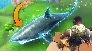 GIANT SHARK IN FORTNITE..?! |Fortnite Funny and Best Moments Ep.81 (Fortnite Battle Royale)