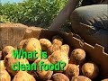 What Does Clean Food Mean to You