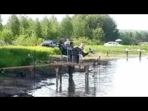 рыбалка в чистых прудах видео