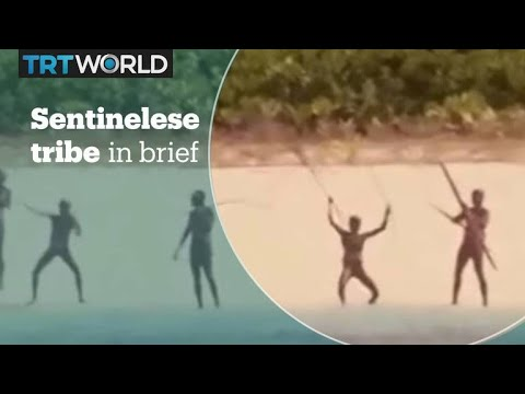 The Sentinelese tribe in brief