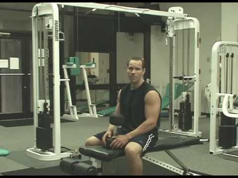Triceps Workouts - Weight Training Exercises For Big Arms Image 1
