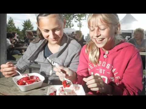 Sweet Touch To The 2012 Strawberry Festival in LaSalle