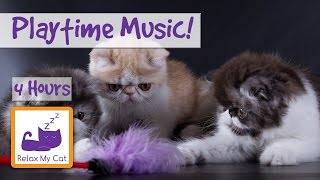 4 Hours of Playtime Music for Kittens! Socialise Your Kitten with this Music!