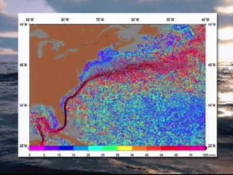 Gulf Oil Spill - NJN News Environment Report