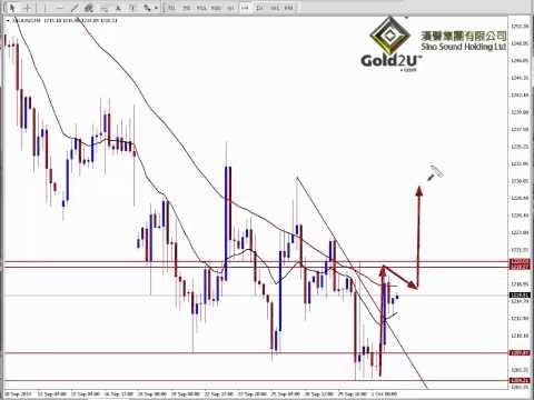 汉声黄金投资贵金属: www.Gold2u.com - 02-10-2014 专家分析 (悦华每日视频)   Gold Market Expert Analysis