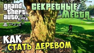 Секретные места в GTA 5 - Как стать ДЕРЕВОМ!?