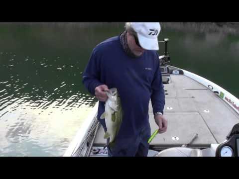 Largemouth Bass Fishing Lake Casitas Southern California - with Rich Tauber