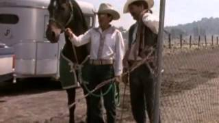 El Vaquero y La Dueña 1998 - Pelicula