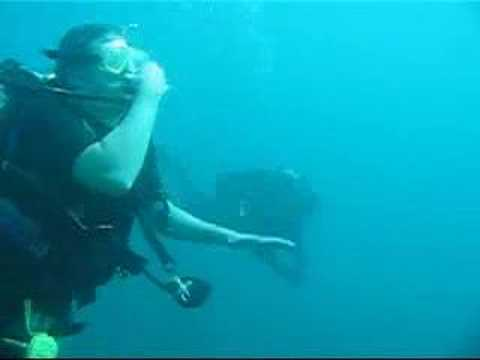 0 Dive Manzanillo Mexico
